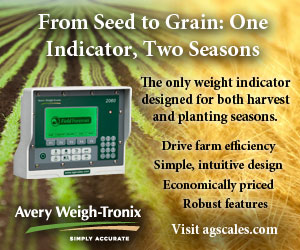 From Seed to Grain: One Indicator, Two Seasons.